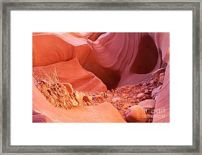 Red Rock Gems Framed Print by Bob and Nancy Kendrick