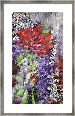Red Rose In Winter Framed Print