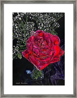 Red Rose Framed Print by Robert Goudreau