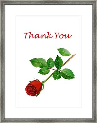 Red Rose Thank You Card Framed Print by Irina Sztukowski