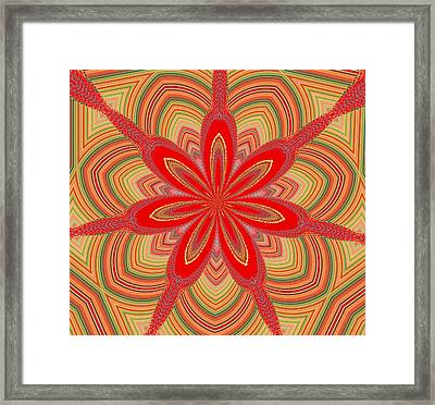 Red Star Brocade Framed Print by Alec Drake
