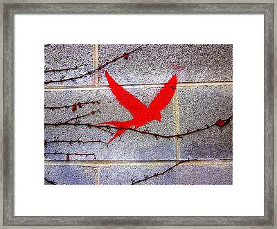 Red Swallow By Laura Gomez Framed Print by Laura  Gomez