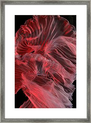 Framed Print featuring the photograph Red Textures by Gillian Charters - Barnes