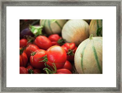 Red Tomatoes And Cantaloupe Melons Framed Print