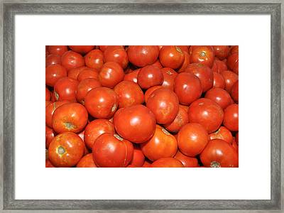 Framed Print featuring the photograph Red Tomatoes by Diane Lent