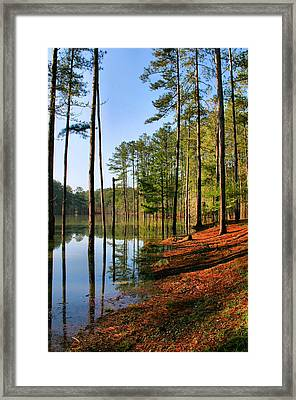 Red Top Mountain Framed Print