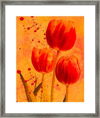 Framed Print featuring the photograph Red Tulips by James Bethanis