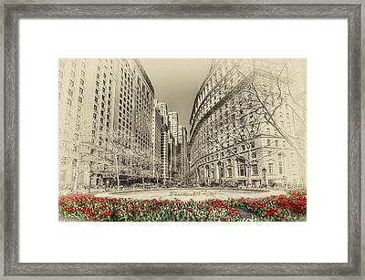 Red Tulips Framed Print by Svetlana Sewell