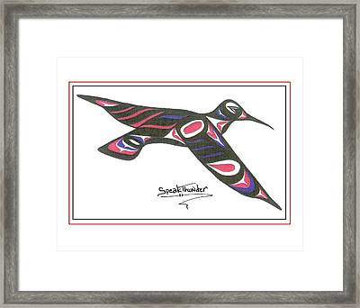 Red White And Blue Humming Bird Framed Print