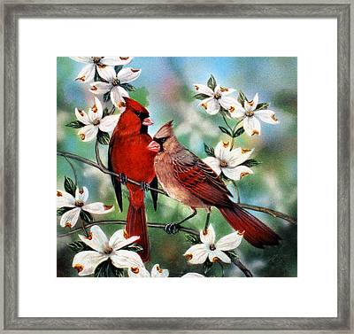 Red White And Blue Spring  Sold Framed Print