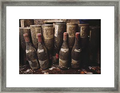Red Wine Bottles, Covered With Mold Framed Print by James L. Stanfield