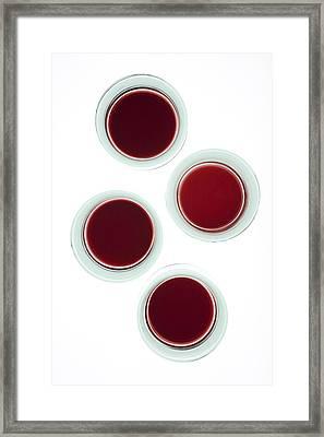 Red Wine Glasses Framed Print by Frank Tschakert