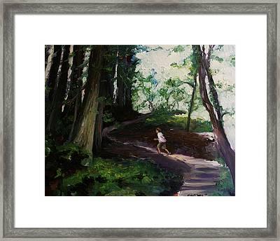 Redwood Forest Study Framed Print by Emily Jones