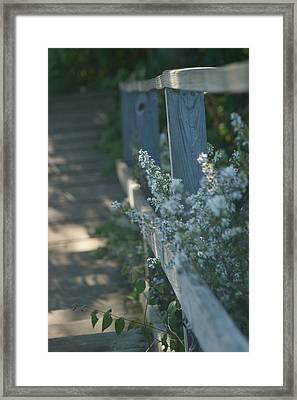 Reedsburg Dam Framed Print