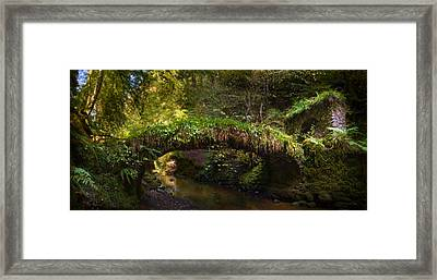 Reelig Bridge And Grotto Framed Print