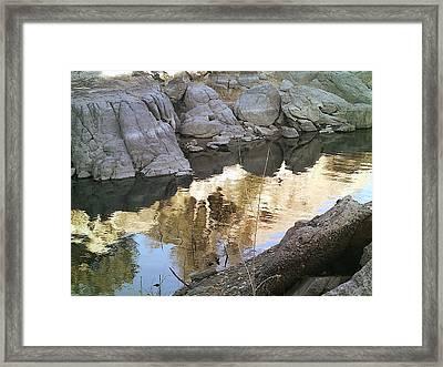 Reflect Framed Print by Lisa Wells