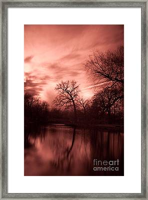 Reflected Framed Print by Rossi Love