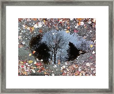 Reflecting Autumn Framed Print by Elijah Brook