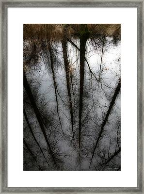Reflecting On A Winter Day Framed Print by Winston Rockwell