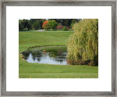 Reflecting Pond Framed Print by Val Oconnor