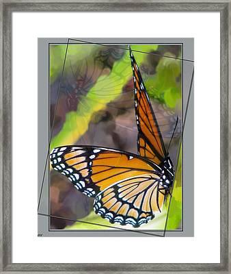 Reflection Back Framed Print by Debra     Vatalaro