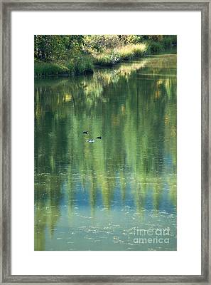 Reflection Framed Print by Bob and Nancy Kendrick