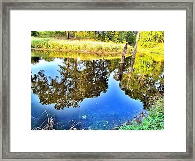 Reflection Framed Print by Evgeniya Sohn Bearden