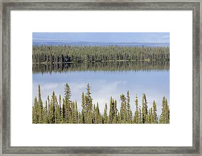 Reflection In Willow Lake Near Copper Framed Print by Rich Reid