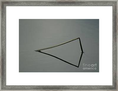 Reflection Framed Print by Odon Czintos