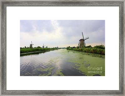 Reflection Of Sky At Kinderdijk Framed Print by Carol Groenen