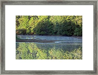 Reflection On The Lake Framed Print by Yumi Johnson