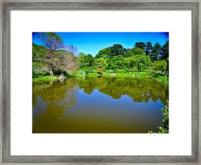 Reflection Pond Framed Print by Erica McLellan