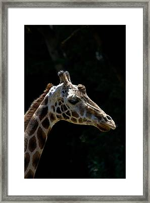 Framed Print featuring the photograph Reflection Time by Roger Mullenhour