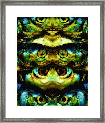 Reflections 1 Framed Print by Skip Nall