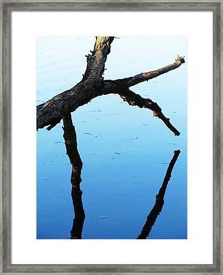 Reflections #1 Framed Print by Todd Sherlock