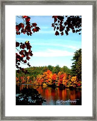 Reflections At Lake Potanipo Framed Print by Ruth Bodycott