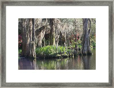 Reflection's At Magnolia Gardens Framed Print