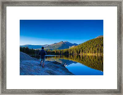 Reflections Framed Print by Daniel Chen