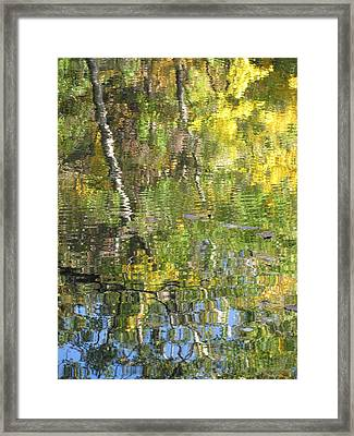 Reflections In Paradise 1 Framed Print by Anita Burgermeister
