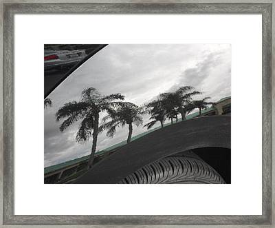 Reflections In The Bumber Framed Print