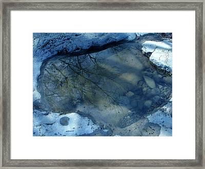 Reflections In Water Framed Print by Colette V Hera  Guggenheim