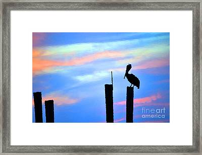 Framed Print featuring the photograph Reflections In Water With Pelican by Dan Friend