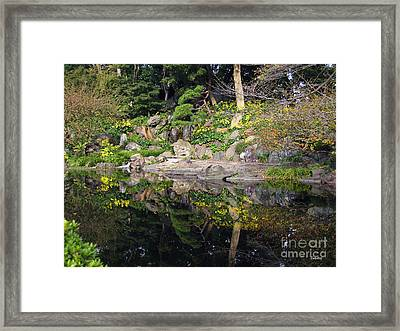 Reflections Framed Print by Eena Bo