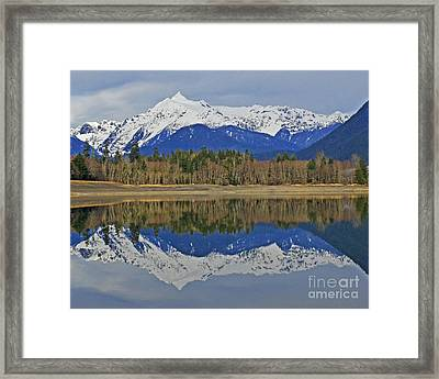 Reflections Framed Print by Jack Moskovita