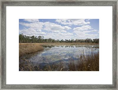 Framed Print featuring the photograph Reflections by Lynn Palmer