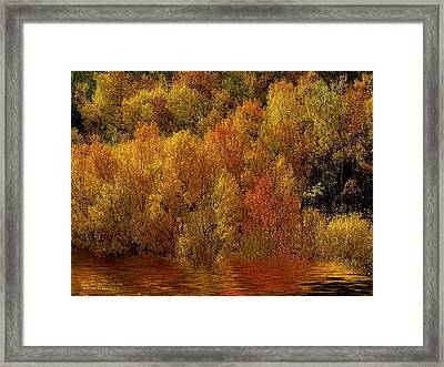 Reflections Of Autumn Framed Print by Carol Cavalaris