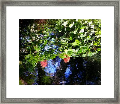 Reflections Of Fall In The Spring Framed Print by Judy Wanamaker