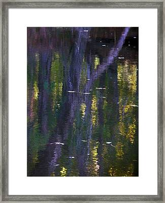 Reflections Of Monet Framed Print by Terry Eve Tanner