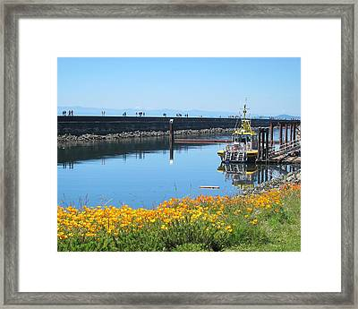 Reflections Of Ogden Point Framed Print