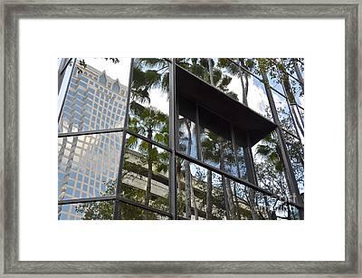 Reflections Of Tampa Framed Print by Carol  Bradley